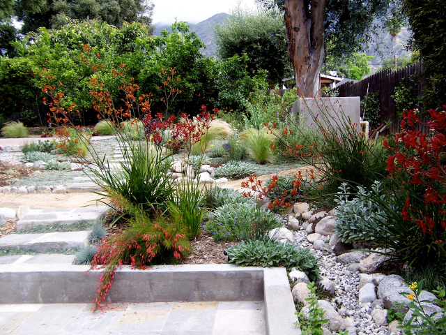 Welldone: Residential landscape design xeriscape on